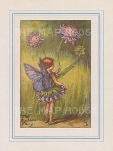 """Barker: Scabious Fairy. 1927. An original vintage chromolithograph. 3"""" x 4"""". [DECp2170]"""