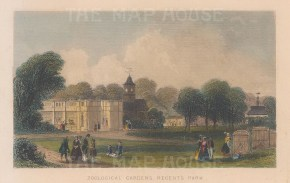 "Tallis: Zoological Gardens, Regent's Park. 1851. A hand coloured original antique steel engraving. 6"" x 4"". [LDNp9053]"