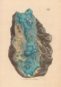 Cuprum hyperoxygenizatume. Hydrate of Copper from the Daleshead mine, Cumberland.