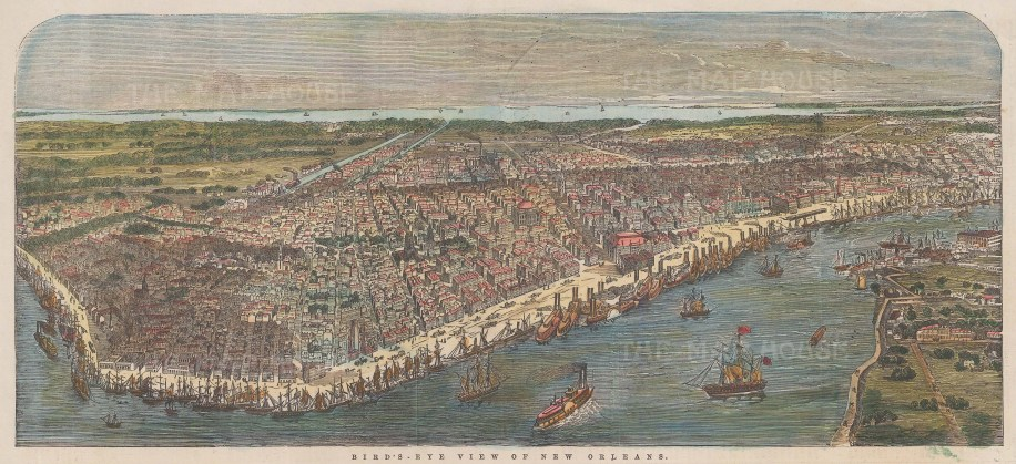 """Illustrated London News: New Orleans, Louisiana. 1853. A hand coloured original antique wood engraving. 14"""" x 6"""". [USAp5051]"""