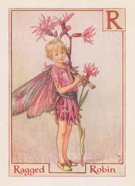"Barker: Ragged Robin Fairy. c1934. An original vintage chromolithograph. 3"" x 4"". [DECp1950]"