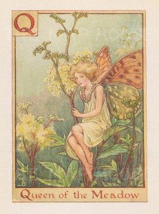 """Barker: Queen of the Meadow Fairy. c1934. An original vintage chromolithograph. 3"""" x 4"""". [DECp1951]"""
