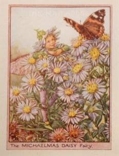 "Barker: Michaelmas Daisy Fairy. c1944. An original vintage chromolithograph. 3"" x 4"". [DECp1971]"