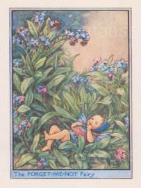 "Barker: Forget me not Fairy. c1925. An original vintage chromolithograph. 3"" x 4"". [DECp2023]"