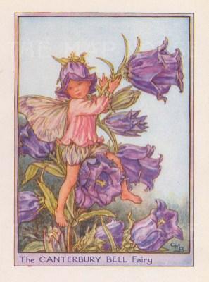 "Barker: Canterbury Bell Fairy. 1925. An original vintage chromolithograph. 3"" x 4"". [DECp2212]"