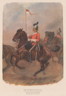 1st Royal Dragoons, amalgamated to the Blues and Royals. Trooper of the First Rank, review order.
