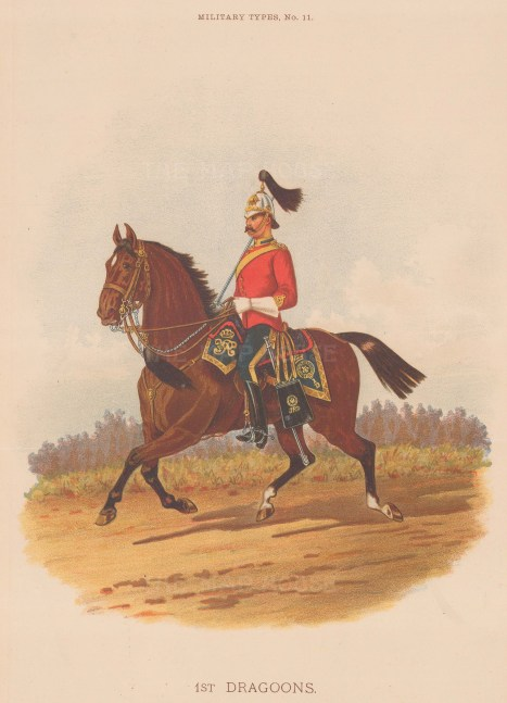 1st Royal Dragoons, amalgamated to the Blues and Royals. Trooper of the first rank.