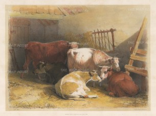 The Cowshed after the Edwardian artist known as Cow Cooper.