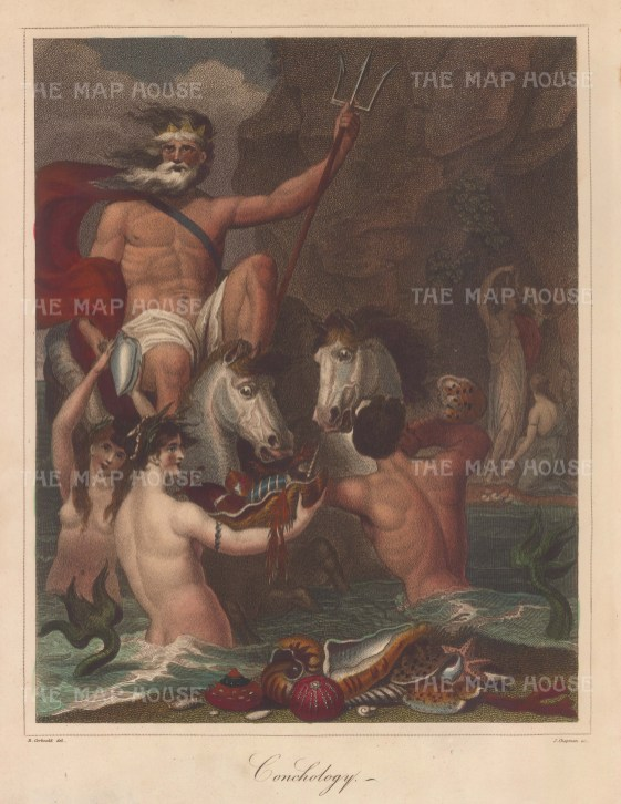 Neptune in a chariot of Chama shell drawn by sea horses attended by mermaids. A merman blows a Murex Tritonis, On the shore two Nereides crowned with seaweed assort festoons.