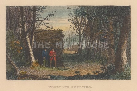 "Wood: Woodcock shooting. c1850. A hand coloured original antique steel engraving. 6"" x 4"". [FIELDp1472]"