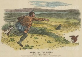 Mems. for the Moors. If you happen to wing a bird.