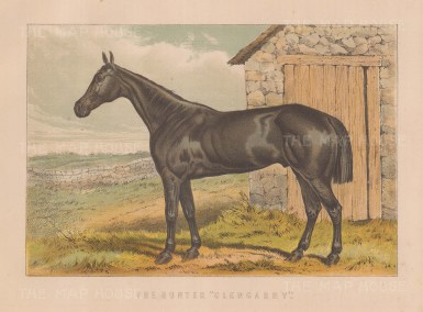 "Miles: Hunter Glengarry. 1895. An original antique chromolithograph. 11"" x 8"". [FIELDp1582]"