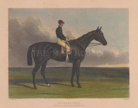 Winner of the Epsom Derby 1843 with jockey Bill Scott.