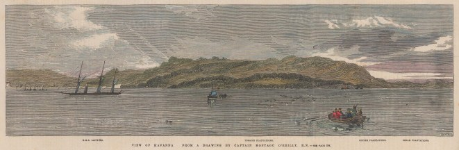 View showing the H.M.S. Lapwing, and Tobacco, Coffee, & Sugar Plantations.