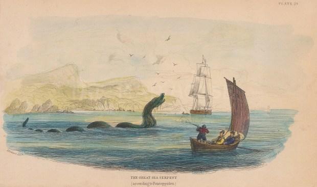 Sea Serpent: Scoliophis Atlanticus according to the Danish historian Erik Pontoppidan 1755.