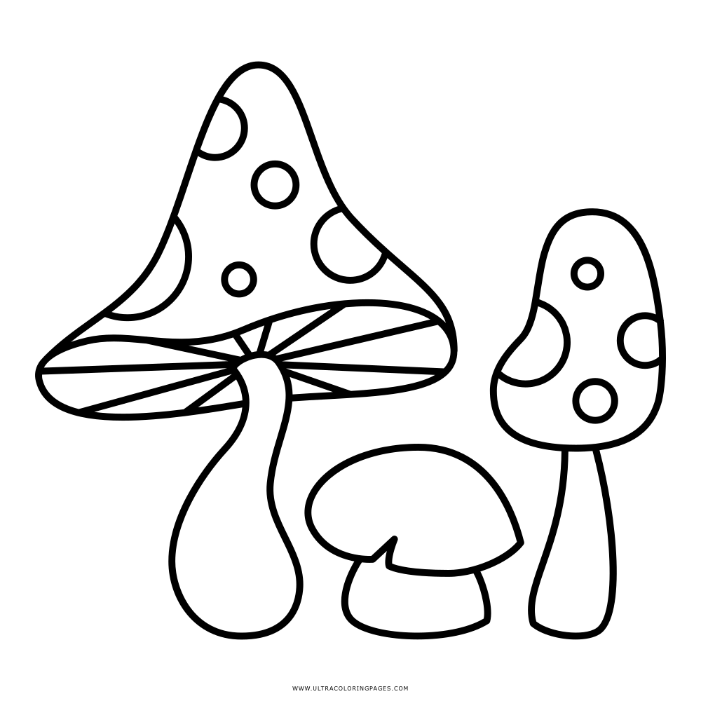 Mushroom Coloring Page Ultra Coloring Pages