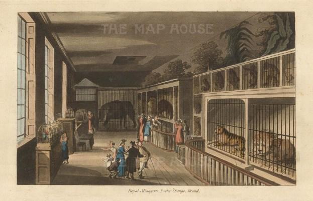 "John Papworth, 'Royal Menagerie', 1816. An original colour aquatint. 6"" x 8"". £POA."