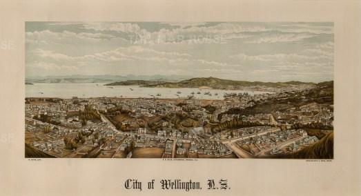 "Edward Wakefield, 'Wellington', 1880. An original chromo-lithograph. 10"" x 17"". £POA."