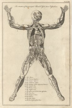 """Dr Motherby. 'The Situation of the Principal Blood Vessels from Eustachius', 1775. An original copper-engraving. 7"""" x 12""""."""