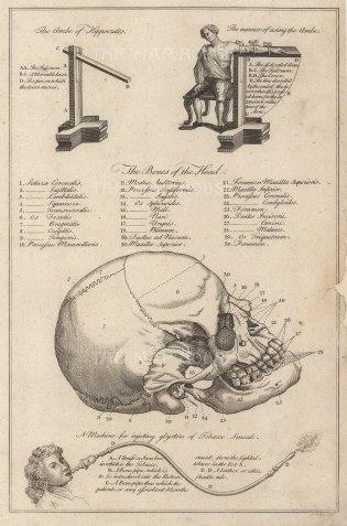 "Dr Motherby, '[Skull et al]', 1775. An original copper-engraving. 7"" x 12""."
