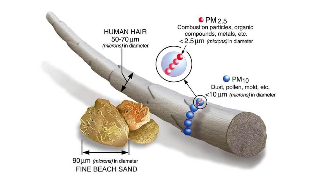 空氣中的懸浮微粒 PM2.5 尺寸比例圖