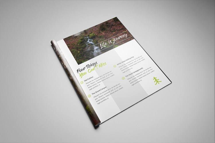 Stapled A4 Brochure Printing