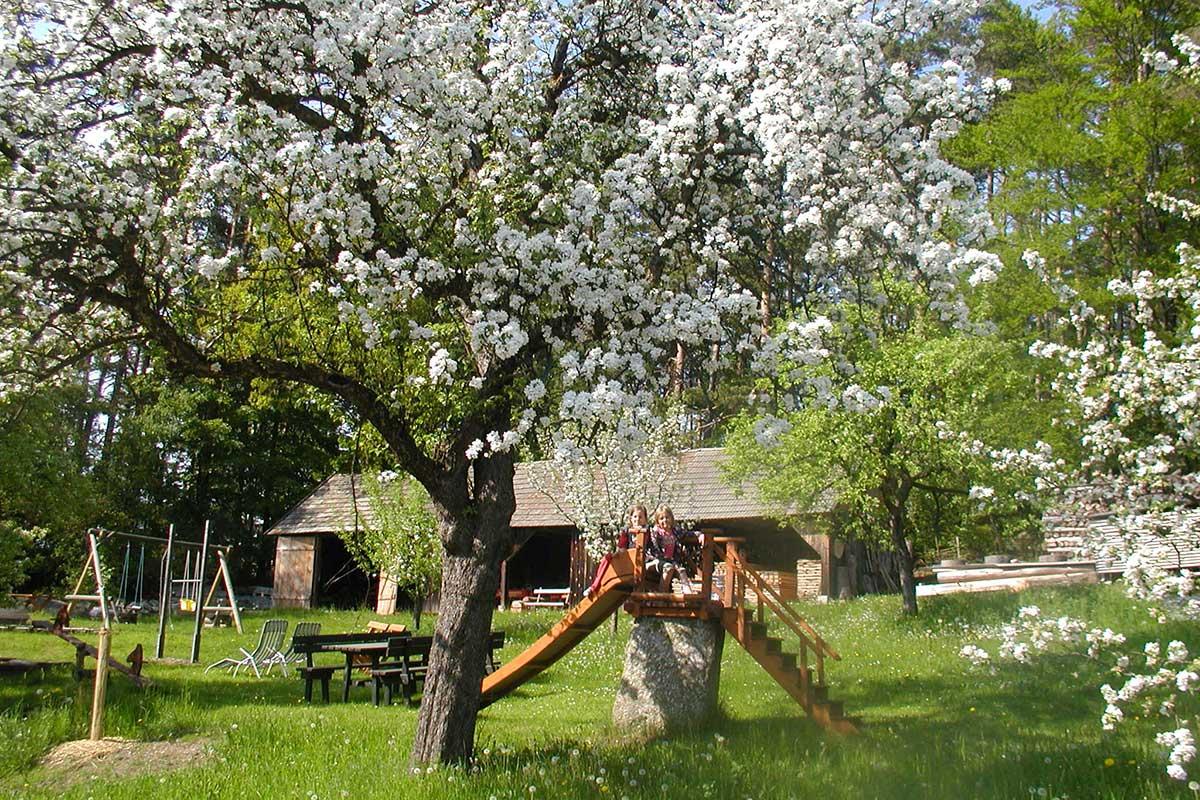 Frühlingsgarten am Prinzenhof