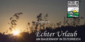 Video Startbild Prinzenhof