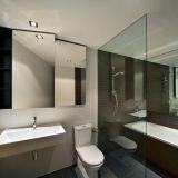 Фото №1: зонирование ванной комнаты с помощью стеклянной перегородки