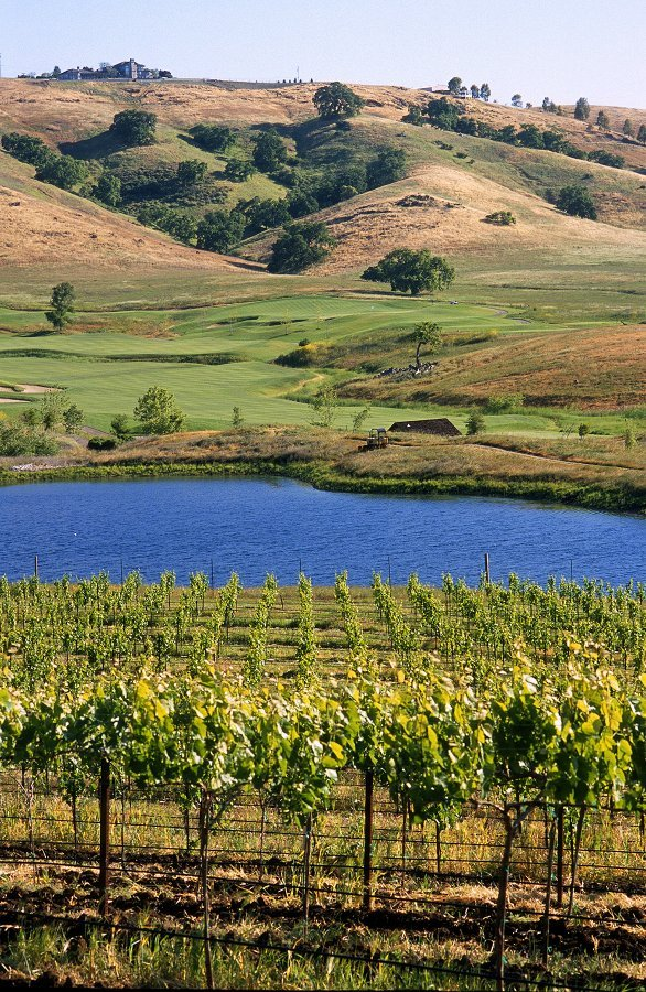 Clos LaChance Winery