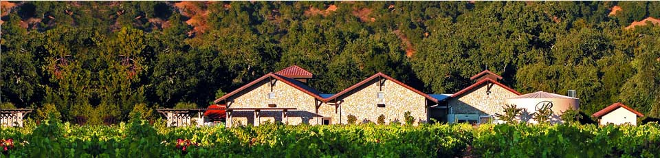 Best Small Wineries Napa Valley