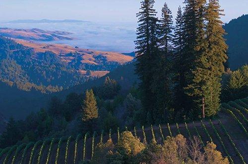 Sonoma Wine Tasting Deals