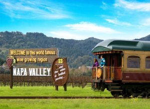 Best Napa Deals - Wine Tain Offer