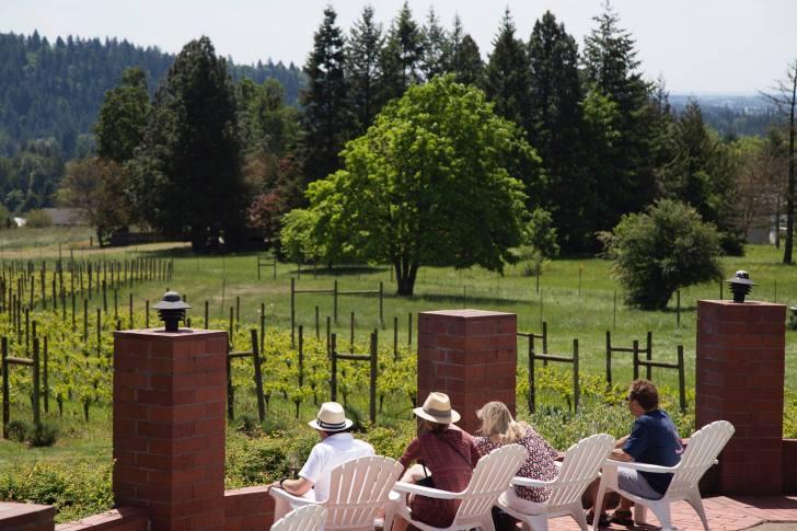 Terra Vina Winery