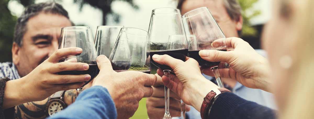 FREE Group Wine Tasting Trip Planning in Napa & Sonoma
