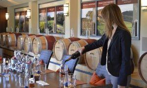 Conn Creek - developing a taste for wine