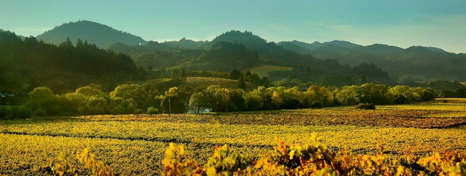 Fairplay & Sierra Foothills AVA