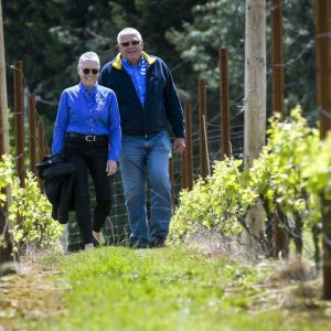 Bluebird Hill Cellars Oregon Virtual Tasting