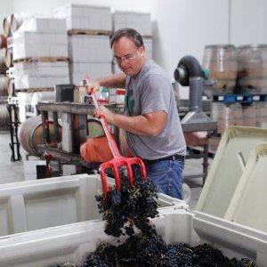 Virtual wine tasting Canada, Tender Hope Winery Okanagan