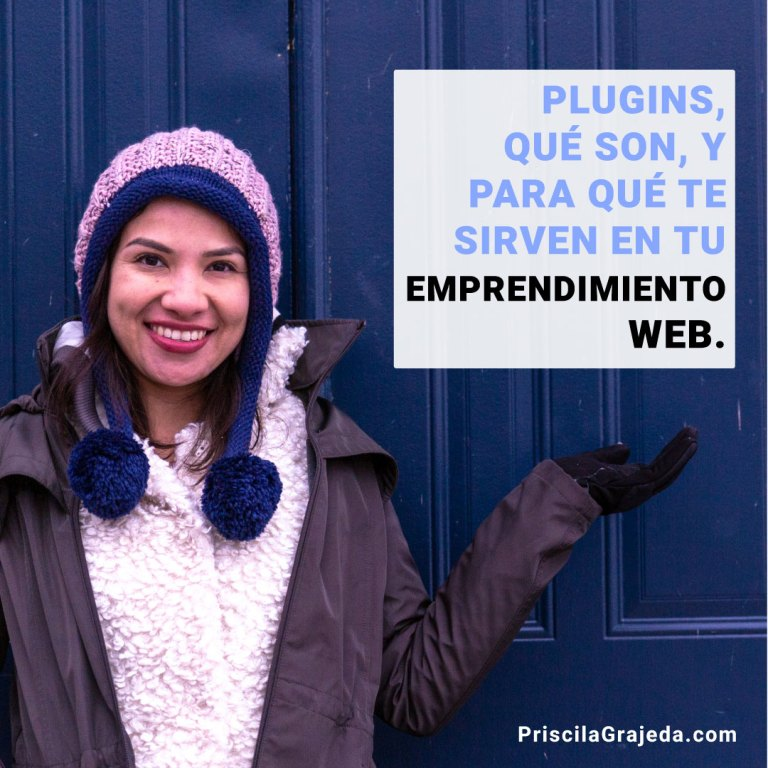 Que es un Plugin de WordPress
