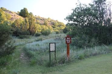Lovely little trail at Black Mesa State Park.