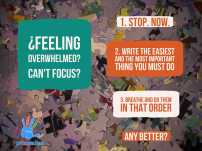 Prismalize Focus Overload Stress
