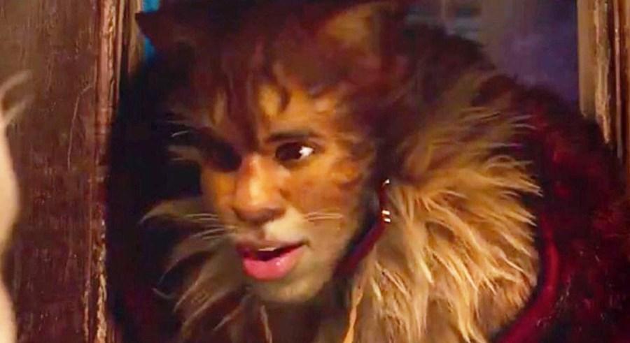 jason-cats-mundo