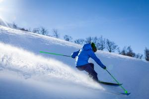 Skiing performance recovery