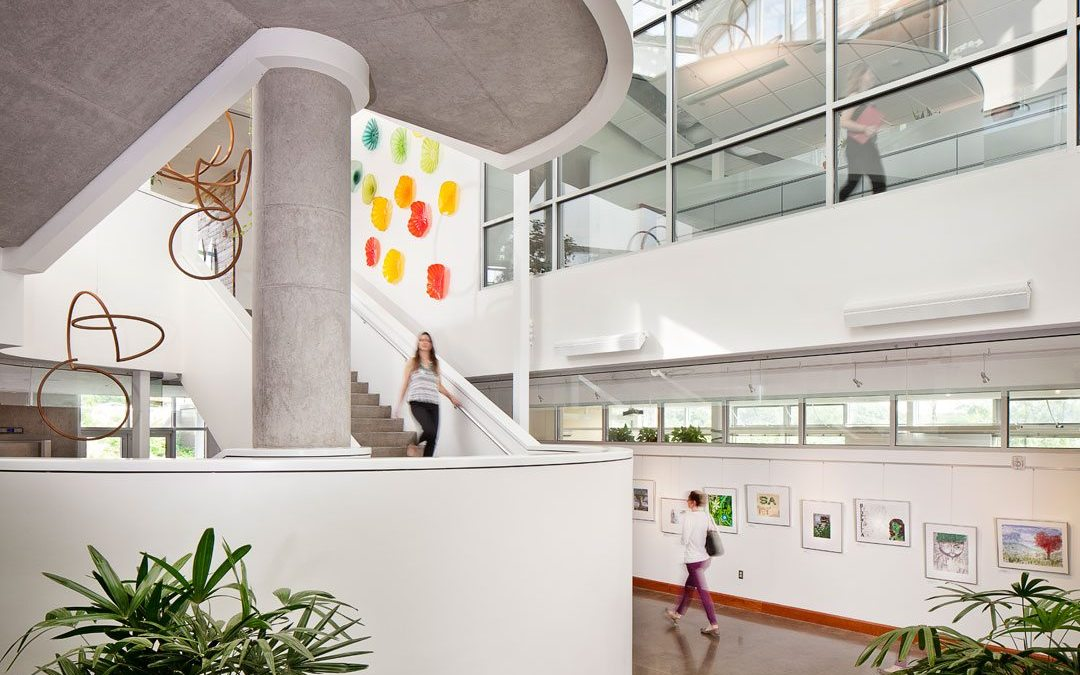 Biophilic Design: Creating Joy Through Design
