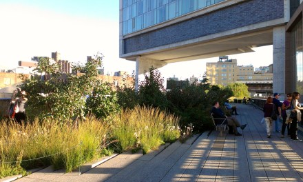 The Economics of Biophilia: Introduction