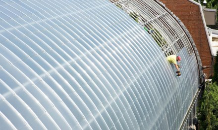 Installation of new bird-friendly glass at National Aviary nears halfway point