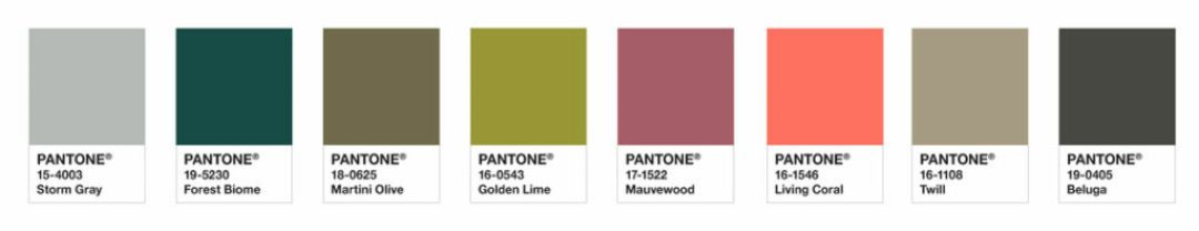 Immediately drawing our attention like a beacon of light, PANTONE Living Coral warmly engages, vivifying the palette as it becomes the focal point in this understated and upscale, composed and cool color grouping.