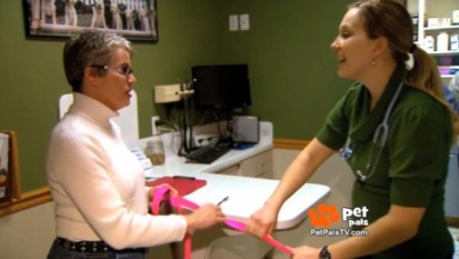 Veterinarian speaks about adoption of greyhounds with racing injuries (Pet Pals TV March 2014)