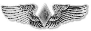 les ailes d'argent